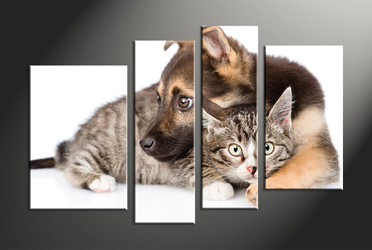 home decor, 4 piece canvas art prints, wildlife group canvas, dog huge canvas art, cat huge pictures