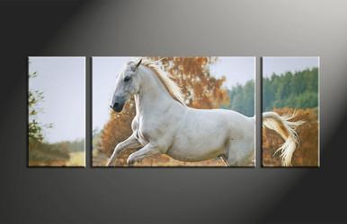 home decor, 3 piece canvas print, animal multi panel art, horse canvas photography, wildlife art