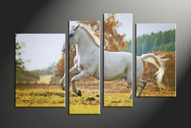 home decor, 4 piece group canvas, animal canvas print, horse huge pictures, wildlife artwork