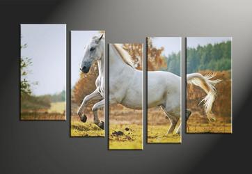 home decor, 5 piece canvas art prints, animal canvas print, horse canvas photography, wildlife art