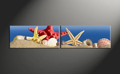home decor, 2 piece canvas art prints, ocean canvas print, shell canvas photography, starfish art