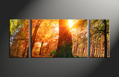 home decor, 3 piece canvas art prints, nature artwork, scenery large canvas, sunrise wall art