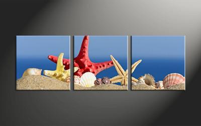 home decor, 3 piece canvas art prints, ocean canvas art prints, shell huge canvas art, red starfish canvas wall art