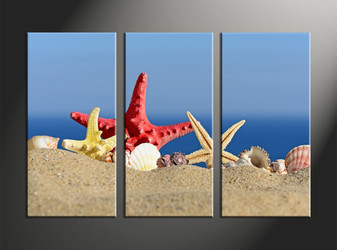 home decor, 3 piece canvas art prints, starfish canvas print, ocean canvas photography, sand art