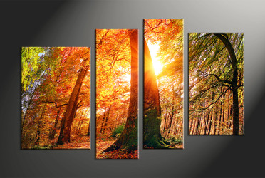 home decor, 4 piece canvas photography, nature artwork, scenery large canvas, sunrise huge pictures