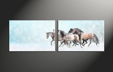 home decor, 2 piece canvas art prints, animal canvas print, horse canvas photography, snow artwork