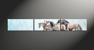 home decor, 3 piece canvas art prints, animal canvas print, horse canvas photography, snow large pictures