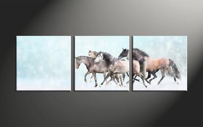 home decor, 3 piece canvas art prints, animal canvas print, horse canvas photography, snow group canvas