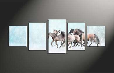 home decor, 5 piece pictures, animal canvas print, horse canvas photography, snow canvas wall art