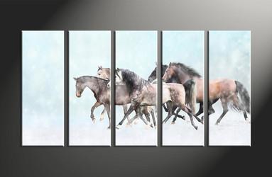 home decor, 5 piece canvas art prints, animal large pictures, horse canvas photography, snow large canvas