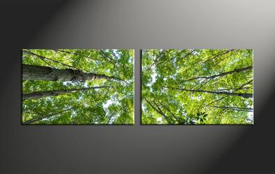 home decor, 2 piece canvas art prints, scenery canvas art prints, nature huge canvas art, leafy tree canvas wall art