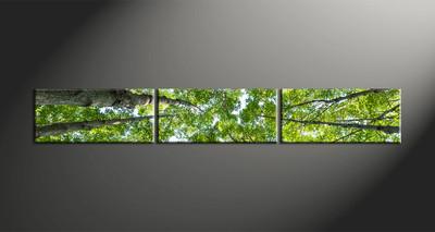 home decor, 3 Piece Wall Art, leafy tree multi panel art, scenery canvas art, nature multi panel art