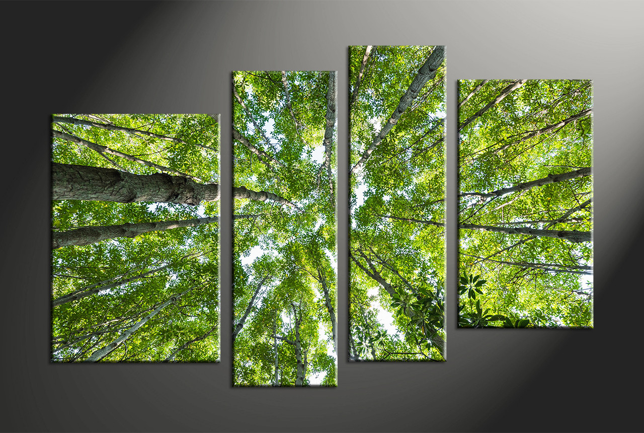 Home Garden Forest Panorama Art Print Home Decor Wall Art
