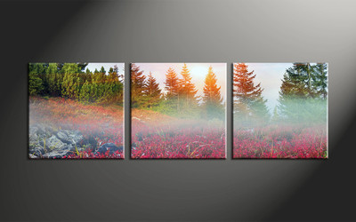 Home Decor, 3 piece canvas art prints, scenery multi panel art, landscape large canvas, landscape wall art