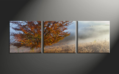 home decor, 3 piece large canvas , landscape huge canvas art, scenery huge canvas art, tree large canvas