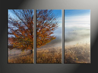 home decor, 3 piece pictures, landscape huge canvas art, scenery huge canvas art, tree art