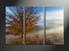 home decor, 3 piece pictures, landscape huge canvas art, scenery huge canvas art, tree art