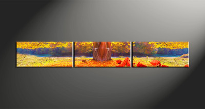 Home Decor, 3 piece canvas art prints, scenery art, scenery canvas photography, scenery multi panel art