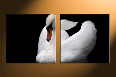 home huge canvas art, 2 piece canvas arts, wildlife artwork, wildlife large canvas,black and white large canvas