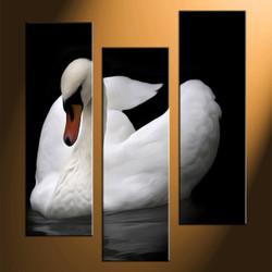 home decor, 3 piece canvas arts, wildlife artwork, wildlife large canvas,black and white wall decor