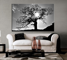 1 piece canvas photography, living room huge pictures, grey scenery large pictures, sunshine wall art
