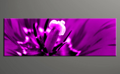 1 piece canvas photography, home decor art, flower huge pictures, floral wall decor