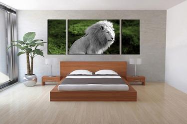 3 piece canvas wall art, bedroom art print, wildlife large canvas, wildlife multi panel canvas, wildlife art