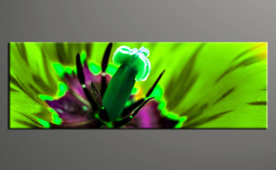 1 piece photo canvas, home decor artwork, floral green multi panel canvas, floral canvas photography