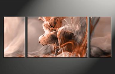 home decor,3 piece canvas print, brown modern wall art, modern canvas photography, modern huge pictures