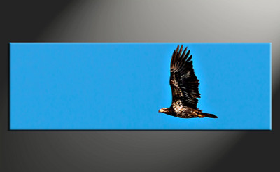 1 piece canvas wall art, bird wildlife pictures, home decor, wildlife wall art