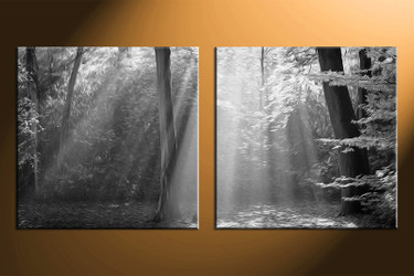 2 piece photo canvas, home decor artwork, oil paintings multi panel canvas, black and white canvas photography