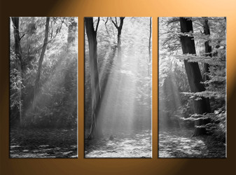 3 piece canvas wall art, oil paintings black and white pictures, scenery home decor, black and white wall art
