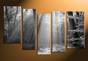 5 piece canvas wall art, black and white scenery, black and white pictures, oil paintings home decor, black and white wall art
