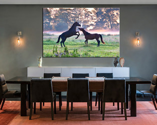 1 piece large canvas, dining room canvas wall art, animal  artwork, animal huge pictures, animal art