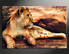 1 piece canvas photography, home decor art, animal huge pictures, lion animal wall decor