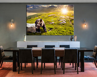 1 piece large canvas, dining room canvas wall art, wildlife green artwork, wildlife huge pictures, bear animal art