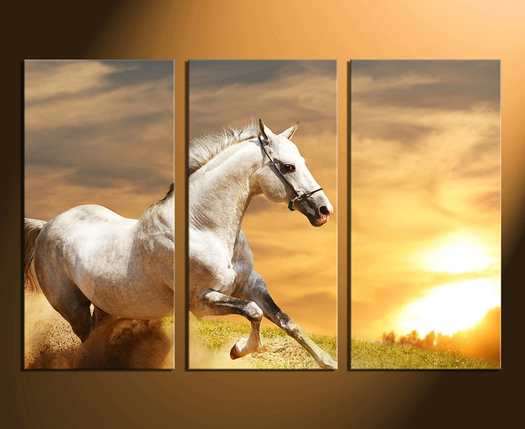 3 piece canvas wall art, home decor, horse canvas photography, animal canvas photography, wildlife canvas print