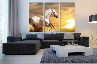 3 piece large pictures, horse canvas print, animal multi panel canvas, wildlife canvas photography, living room art