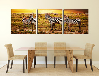 3 piece photo canvas, dining room wall decor, zebra huge canvas print, wildlife artwork, animal art