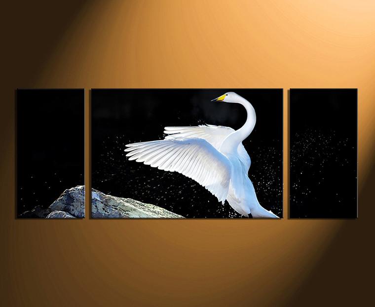 3 piece group canvas, panoramic multi panel art, swan canvas print, bird canvas wall art, wildlife artwork, swan canvas photography