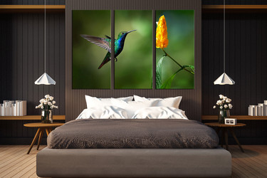 3 piece photo canvas, bedroom canvas photography, nectar photo canvas, bird canvas wall art, bird huge canvas art