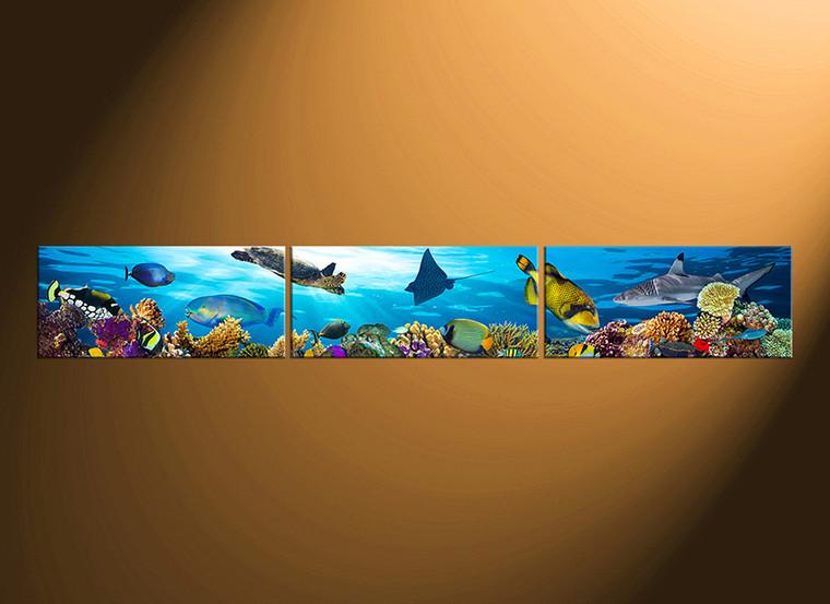 3 piece canvas wall art, home decor, blue artwork, turtle multi panel canvas, fish huge canvas print, wildlife artwork