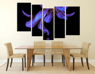5 piece wall decor, dining room wall art, floral photo canvas, flower group canvas, purple orchid art