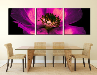 3 piece group canvas,  flower photo canvas, panoramic large pictures, purple floral canvas print,  dining room canvas wall art