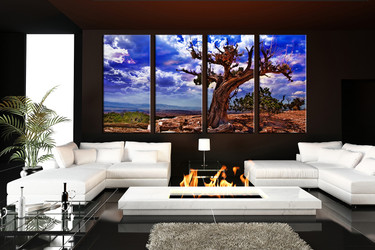 4 piece canvas print, living room group canvas, dead tree canvas photography, living room scenery canvas photography
