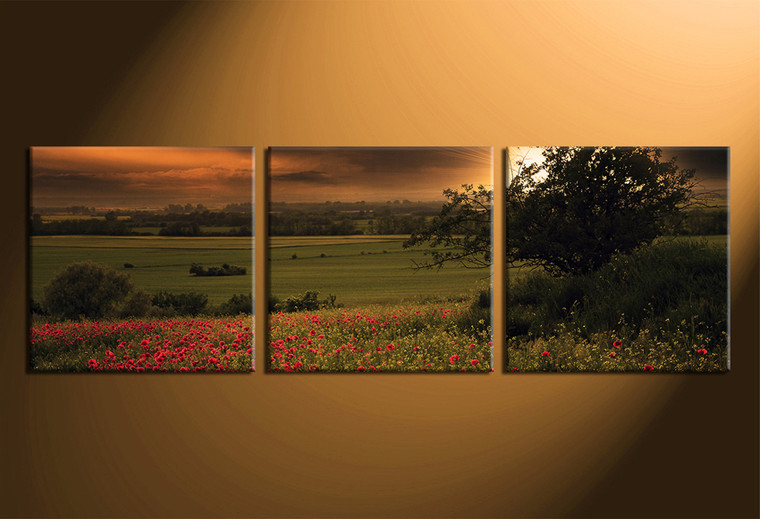 3 piece canvas wall art, home decor art, green scenery canvas wall art, panoramic scenery  pictures