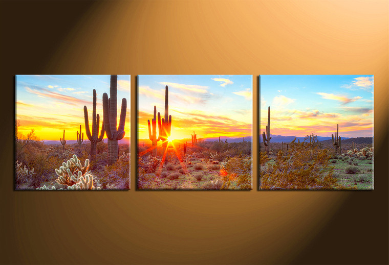 home decor, 3 piece canvas art prints, scenery art, scenery canvas photography, scenery saguaro cactus multi panel art