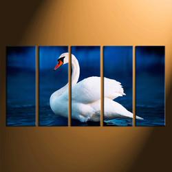 5 piece photo canvas, swan canvas wall art, home decor, wildlife canvas print, wildlife huge canvas print