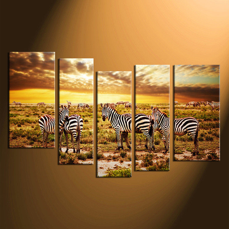 home decor, 5 piece pictures, animal canvas print, zebra canvas photography, wildlife canvas wall art