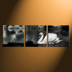 3 piece large canvas , panoramic group canvas, wildlife canvas wall art, swan huge canvas print, home decor